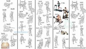 Full Week Training Plan - 5 Days Body Training For Muscle Mass - Project Next