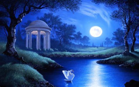 swan  garden lake  full moon night hd wallpaper