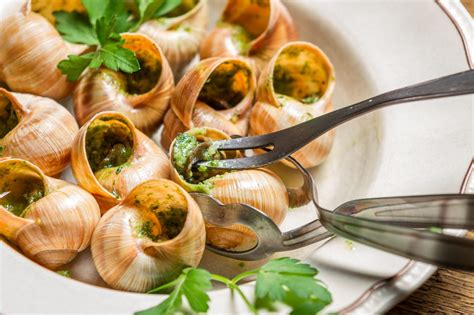 escargot cuisiné escargots à la bourguignonne magazine worldpass