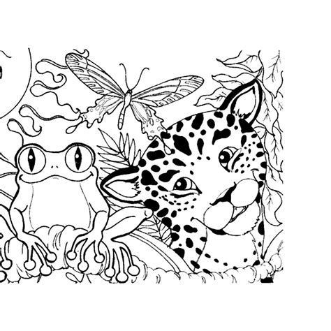 rain forest coloring pages coloring home