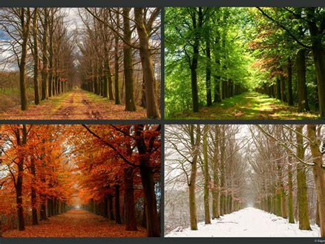 Seasons  This Thing Called Life