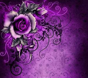 Download rose flower wallpapers to your cell phone ...