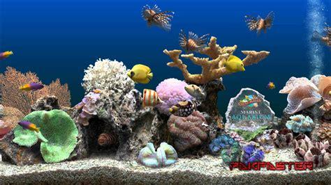 Living Marine Aquarium 2 Animated Wallpaper - free usmc wallpapers and screensavers wallpapersafari