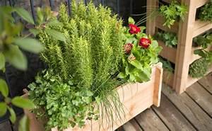 Comment Disposer Des Pots Sur Une Terrasse : structurer sa terrasse conseil balcon terrasse botanic ~ Melissatoandfro.com Idées de Décoration