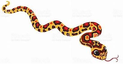 Snake Corn Clipart Cartoon Serpiente Cobra Milho
