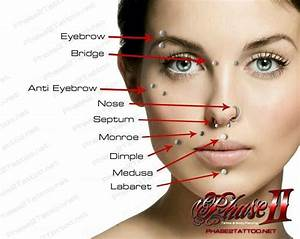 Face Piercings Names And Pictures