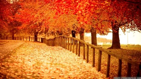 fall themes beautiful autumn wallpapers wallpaper cave