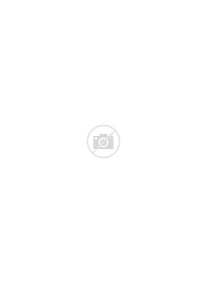 Svg Hungary 1793 Coa Vidovich Commons Pixels