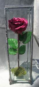 Rose In Glas : 24 best images about preserved wedding flowers in glass case domes lanterns and jewelry boxes ~ Frokenaadalensverden.com Haus und Dekorationen