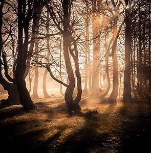 Photo Art: Nature Photography Inspiration #3