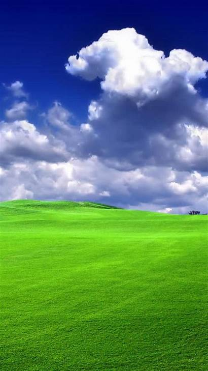 Grass Backgrounds Nature Mobile Wallpapers Xp Windows