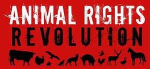 You May Think You U2019re An Animal Rights Activist  But You U2019re