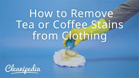 how to remove coffee stains from white shirt how to remove tea or coffee stains from clothing youtube