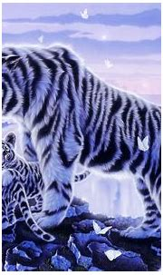 White Tiger and Her Cubs HD Wallpaper | Background Image ...