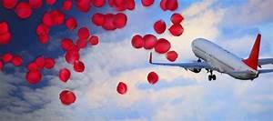 Luftfracht Preise Berechnen : rote rosen zum valentinstag per luftfracht sats ~ Themetempest.com Abrechnung