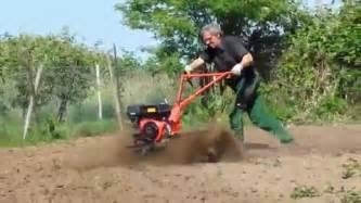 Wie Bekämpfe Ich Pilze Im Garten by Wurzeln Entfernen Chemisch Garten Umgraben Anlegen