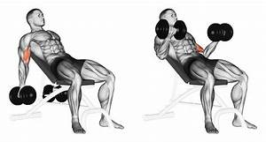 Bicep Workout- Giant Sets for Giant Biceps