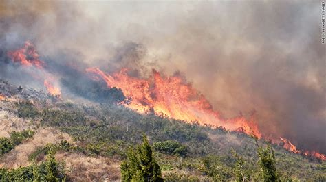 marijuana farms  burning  california wildfires