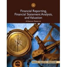 solution manual  financial reporting financial