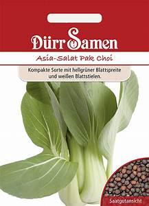 Pak Choi Samen : asia salat d rr samen webshop ~ Orissabook.com Haus und Dekorationen