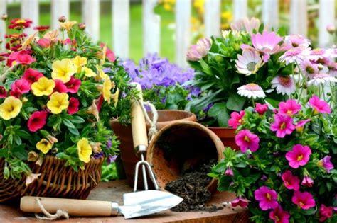 Gründliche Gartenarbeit Im Frühjahr Gartenfroschratgeber