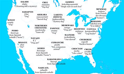 map native american americans before contact were europe animal oc horse strange dogs words horses americas arrived colonists associating domestic