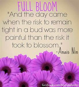 Quotes About Bl... Blooming Relationship Quotes