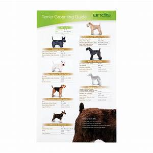 Andis terrier clipping guide buy here groomers uk for Andis dog clipper blade guide