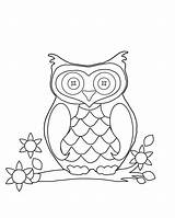 Triplets Coloring Blank Pages Template Sheet Owl sketch template