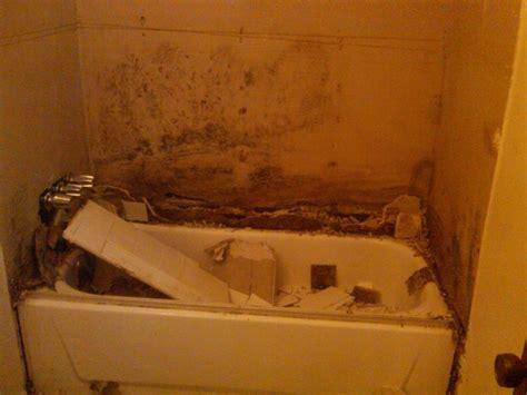 shower smell  huckins construction