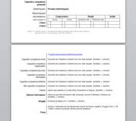 Format Cv Europass Inglese Cv Writing Tips 2011 Research
