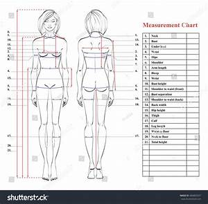 Printable Human Body Measurement Diagram