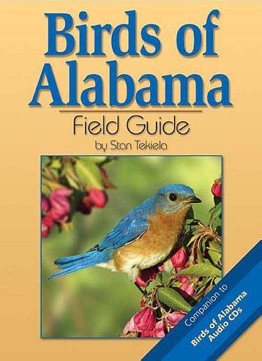 birds of alabama field guide alabama bird identification