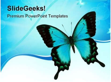 swallowtail butterfly animals powerpoint templates