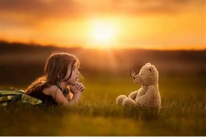 Teddy Bear Child Sunset Butterfly Sun Field