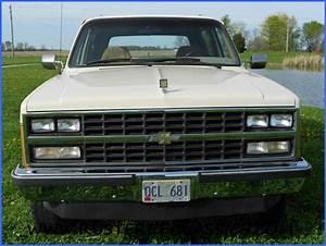 1989 89 Chevrolet Chevy 4x4 K5 Blazer Silverado Gold And Tan