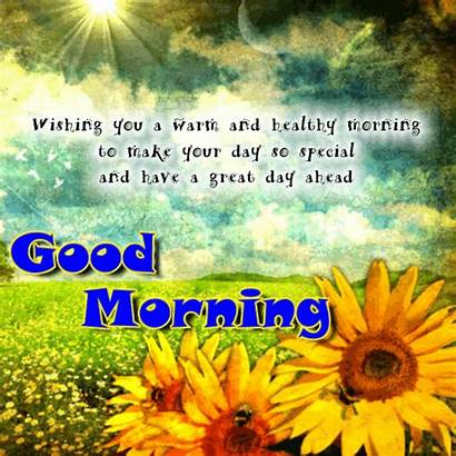 Morning Warm Healthy Greetings Greeting Cards Card