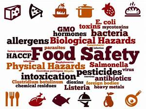 Fao Says Food Safety Focus Must Be On Prevention