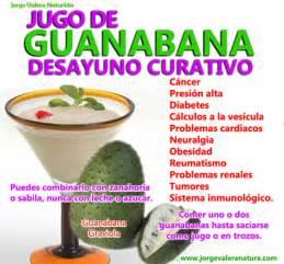 La Guanabana : Fruta que combate y previene el cancer