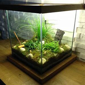 Jardin D Interieur : creer un joli jardin d interieur recycler un aquarium retrouvez nos videos youtube diyco ~ Dode.kayakingforconservation.com Idées de Décoration