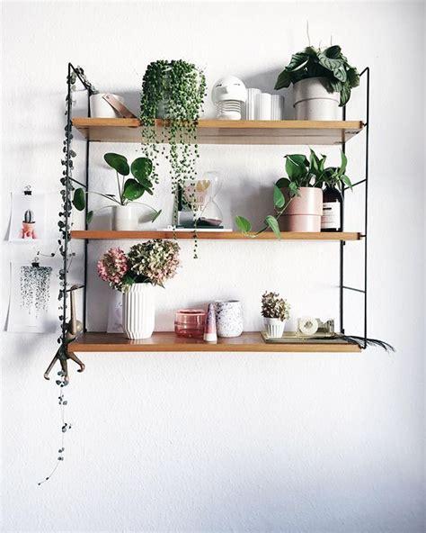 String Regal Diy by Pflanzenliebe Paulsvera Plantgang Versammelt Auf Dem