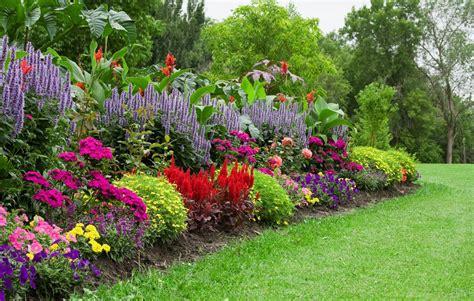 organic ways   rid  garden weeds blog