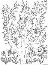 Coloring Tree Leaves Pages Pears Adult Olivier Flowers Printable Adults Vegetation Fleurs Et Info Justcolor sketch template