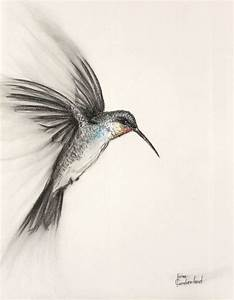 Original Bird Art Charcoal Drawing of a flying by ...