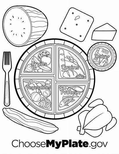 Coloring Plate Pages Printable Nutrition Myplate Worksheets