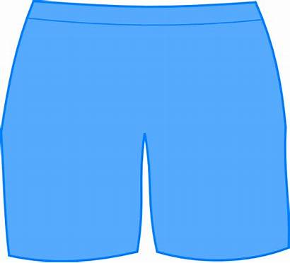 Shorts Clipart Transparent Bathing Clip Underwear Vector
