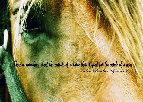 eye quote andalusian jamart