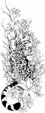 Ocelot Coloring Adults Quidames Deviantart Tattoo Tattoos Adult Coloriage Luchs Colouring Tatouage Nebula Galaxy Cat Books Drawings Buch Wenn Mal sketch template