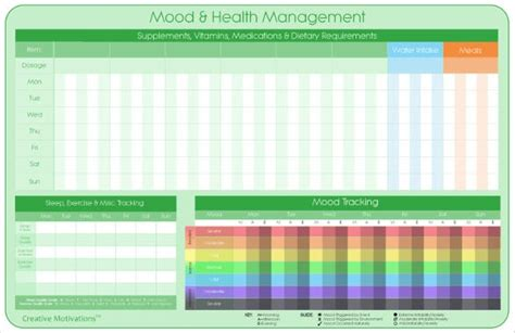 management tracking template   word excel