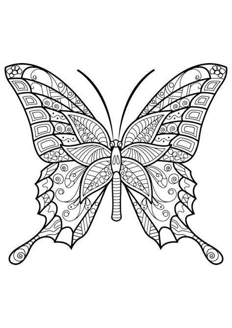 butterfly coloring pages  adults butterfly coloring